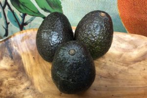 office avocado